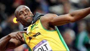 Using Bolt